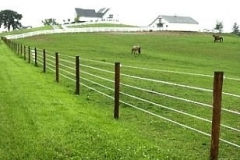 Rural electric fence